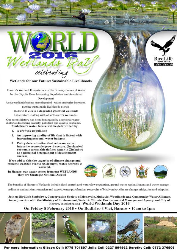 World Wetland Day 2016 flyer